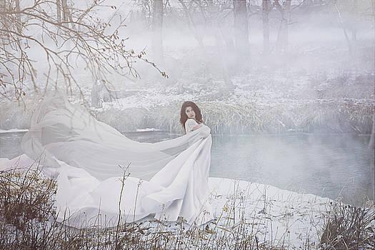 Misty River by Marcin and Dawid Witukiewicz