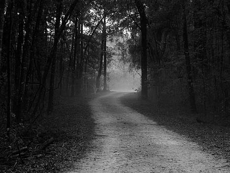Misty Road by Julie Pappas