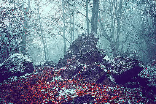 Misty Rocks by Jenny Rainbow