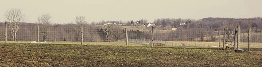 Anne Cameron Cutri - Misty Rural Scene