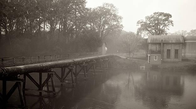 Misty Sepia by Patrick Biestman