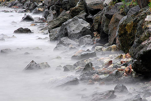 Misty Shore by Brian Puyear