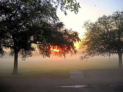Misty Sunrise II by Ted Hebbler