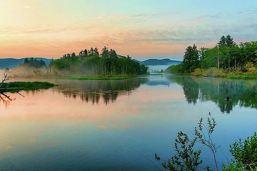 Misty Sunrise III by Dee Browning