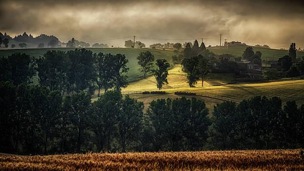 Misty Sunrise by Nigel Jones