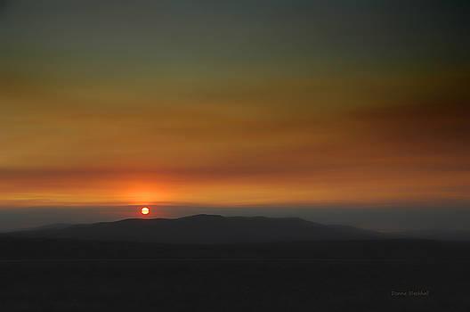 Donna Blackhall - Misty Sunset