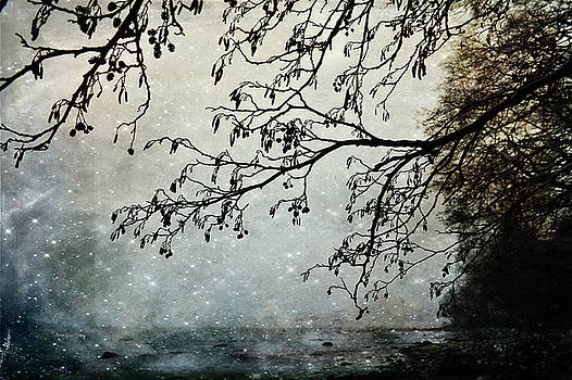 Misty Tide by Randi Grace Nilsberg