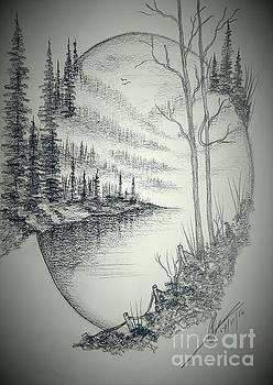Misty Twilight by Collin A Clarke