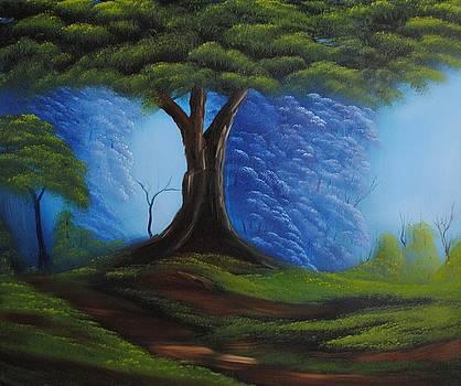 Misty Valley by John Johnson
