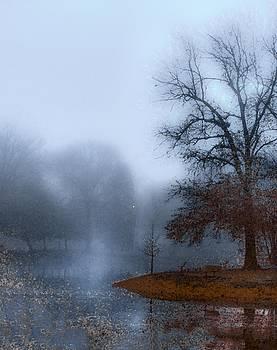 Misty Water by Abbie Loyd Kern