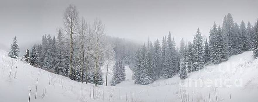 Misty Winter Panorama by Jeffrey Worthington