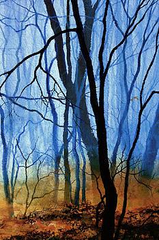 Hanne Lore Koehler - Misty Woods - 3