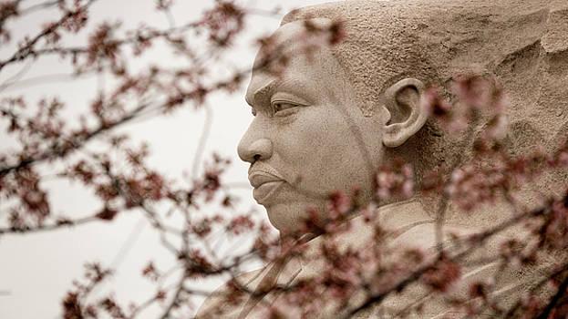MLK in DC by Jack Nevitt