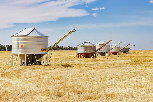 Mobile field bin grain silos in paddock after wheat harvest  by Carl Chapman