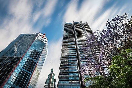 Modern high-rise buildings in Sydney City Center by Daniela Constantinescu
