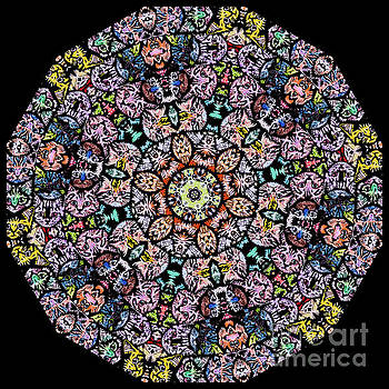 Modern Kaleidoscope featuring cat faces by Amy Cicconi