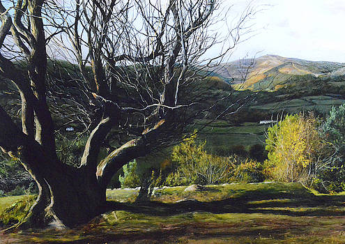 Moel Famau from Loggerheads by Harry Robertson