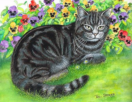 Moggy in the pansies by Val Stokes