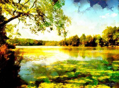 Mohegan Lake Hidden Oasis by Derek Gedney
