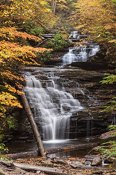 Mohican Falls by John Daly