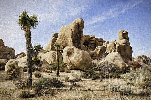 Mojave Desert by Bill Baer