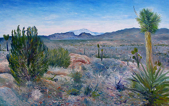 Mojave desert with Mt San Jacinto California USA 2001   by Enver Larney