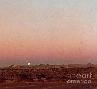 Mojave Sunset by Walter Chamberlain