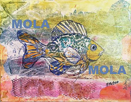 Mola Mola by Edith Hardaway