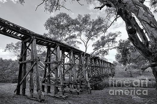 Mollisons Creek Trestle Bridge by Linda Lees