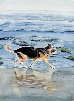 Molly enjoying the beach by Marcella Morse