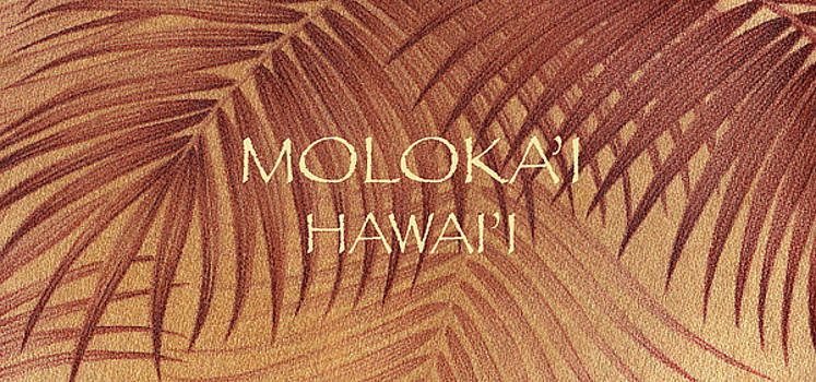 James Temple - Molokai Palm