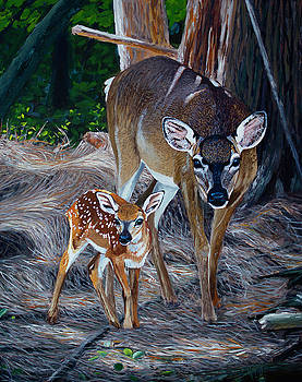 Mom Deer by Manuel Lopez