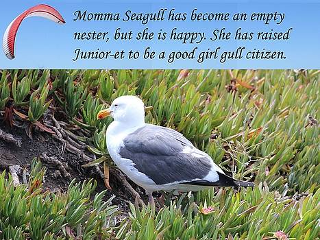 Gary Canant - Momma Seagull is an empty nester
