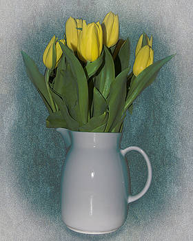 Moms Tulips by William Havle