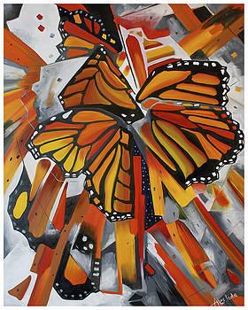 Monarch by Alexandra Kube