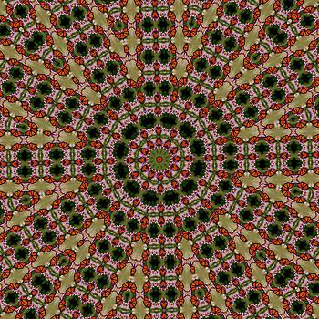 Monarch Butterfly -Kaleidoscope by David Smith