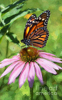 Barbara McMahon - Monarch Butterfly Painterly