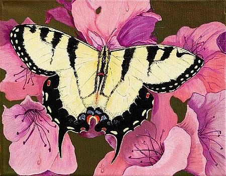 Monarch Butterfly by Sue Ervin