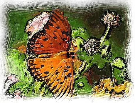 Monarch by Harry Dusenberg