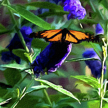 Mick Anderson - Monarch on a Butterfly Bush