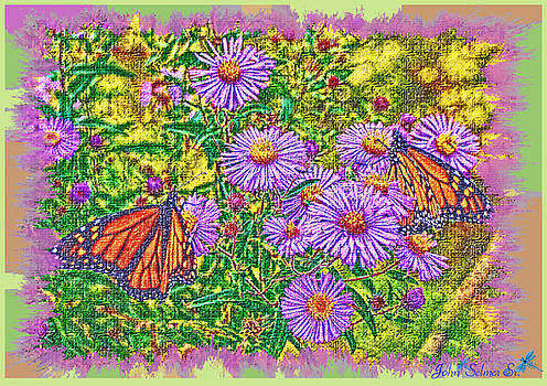Monarchs and Asters by John Selmer Sr