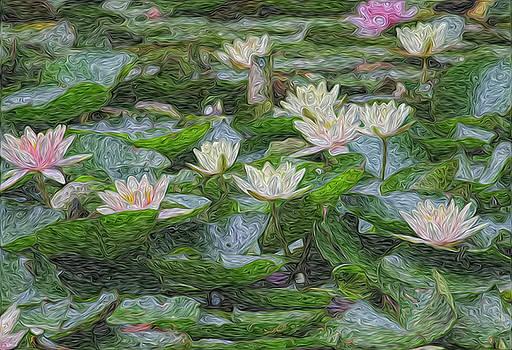 Monet's Water Lilies by Craig Sanders