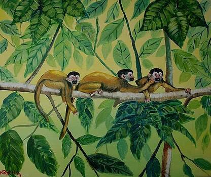 Monkey Games by Jean Pierre Bergoeing