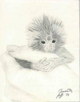 Monkey by Jesska Hoff