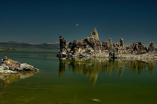 Mono Lake Flyover  by Michael Gordon