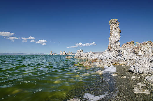 Margaret Pitcher - Mono Lake No.2