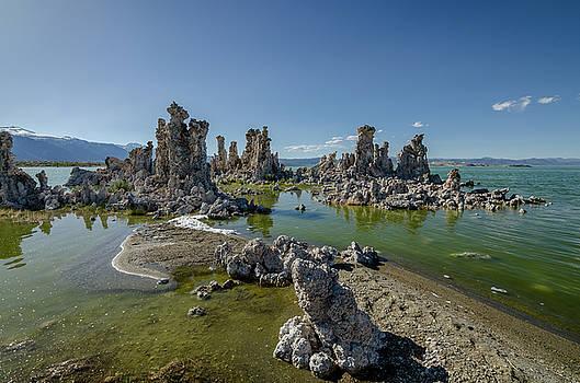 Margaret Pitcher - Mono Lake No.3