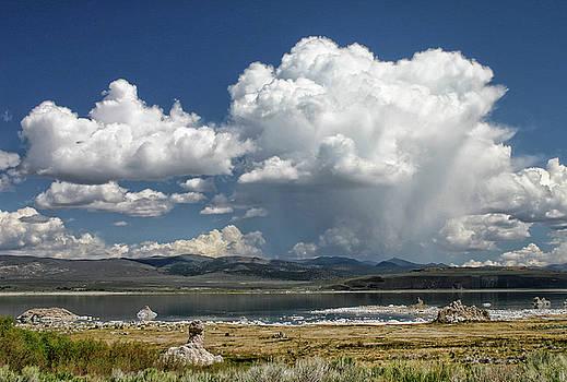 Mono Lake Summer Shower  by Tom Kidd