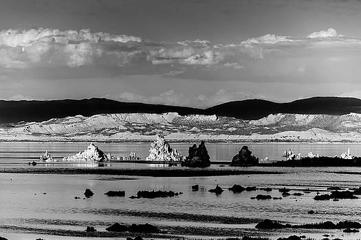 Mono Lake Tufa by Daniel Danzig