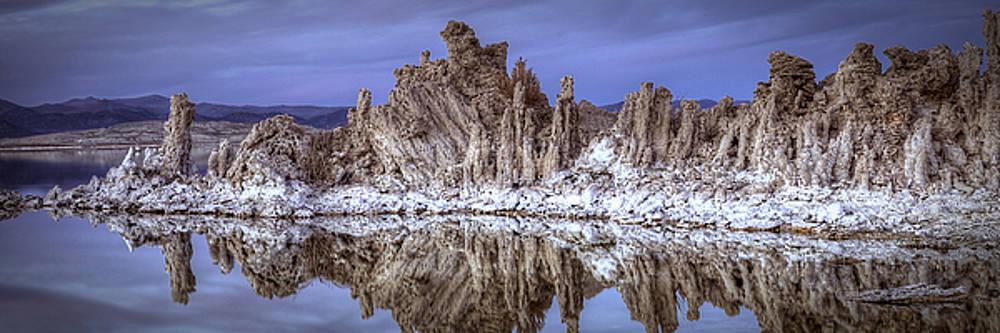 Mono Lake Tufa Formations by Robert Melvin